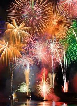 fireworks-advice-champion-vets